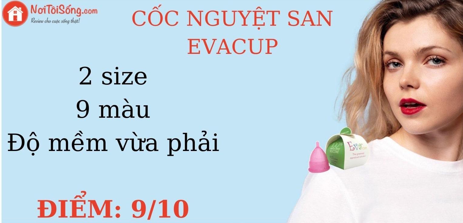 Cốc nguyệt san Evacup - 2 size, 9 màu