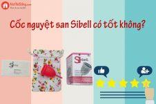 Cốc nguyệt san Sibell có tốt không?