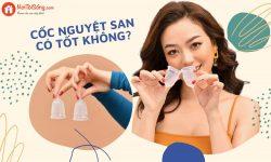 Cốc nguyệt san có tốt không? Có nên dùng thay thế băng vệ sinh/tampon?