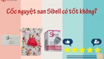 Review chi tiết cốc nguyệt san Sibell có tốt không?